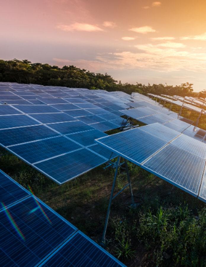 solar farm-3